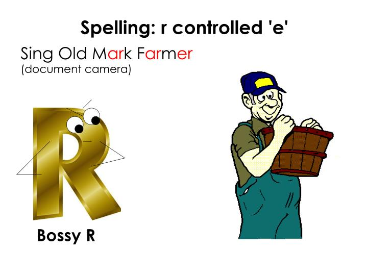 Spelling: r controlled 'e'