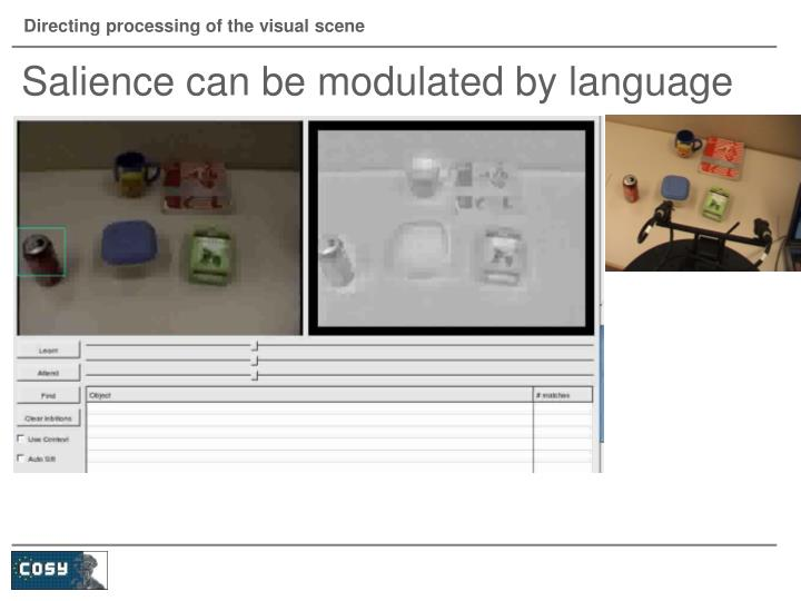Directing processing of the visual scene