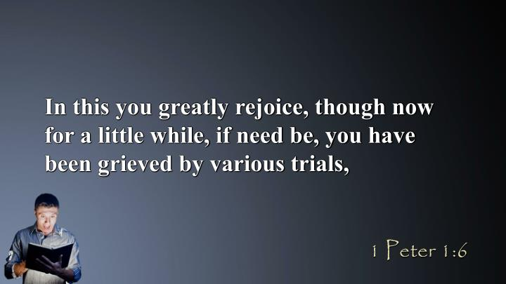 In this you greatly rejoice, though now for a little while, if need be, you have been grieved by various trials,