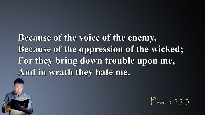 Because of the voice of the enemy, Because of the oppression of the wicked; For they bring down trouble upon me, And in wrath they hate me.