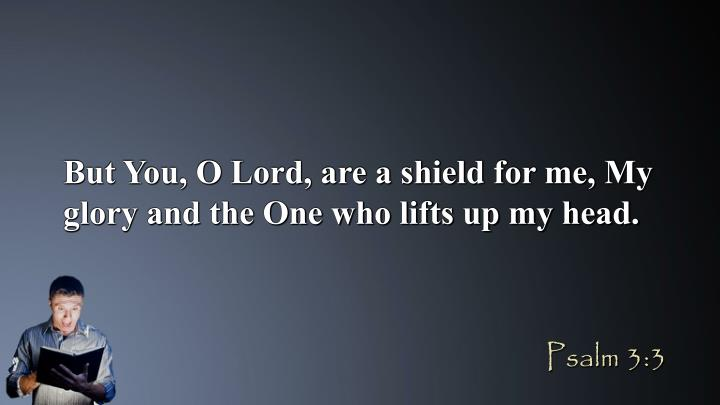 But You, O Lord, are a shield for me, My glory and the One who lifts up my head.