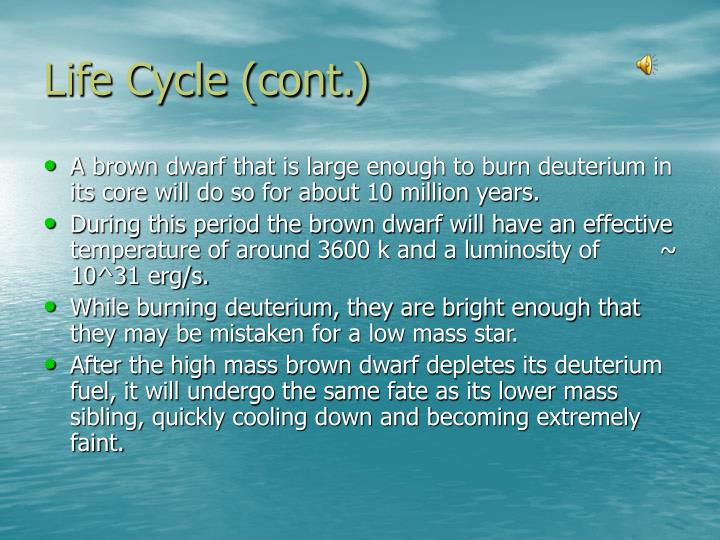 Life Cycle (cont.)