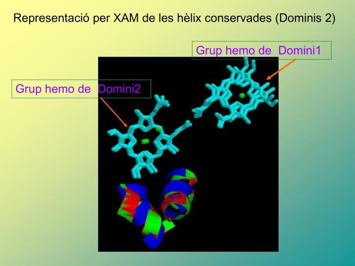 Grup hemo de  Domini1