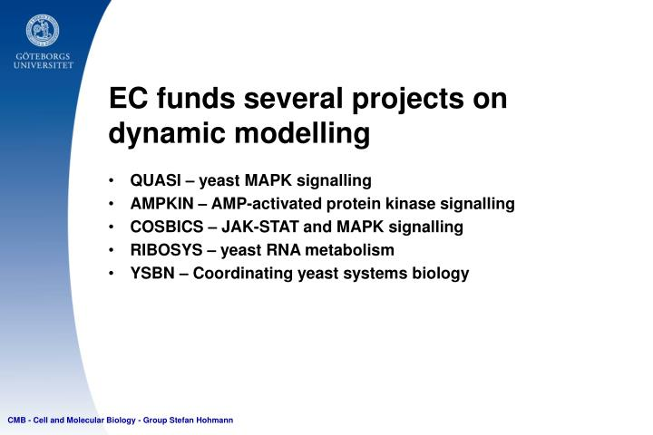 EC funds several projects on dynamic modelling