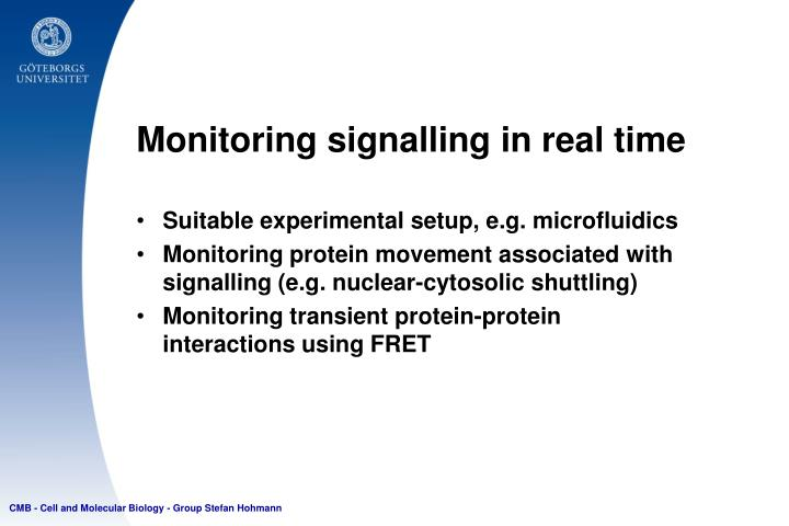 Monitoring signalling in real time