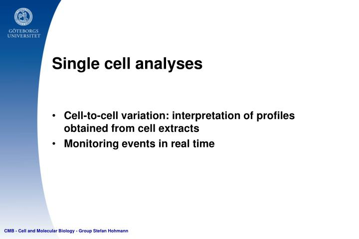 Single cell analyses