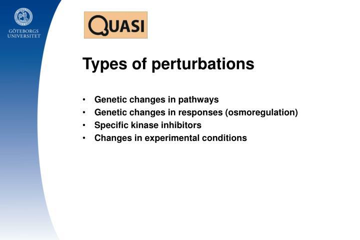 Types of perturbations