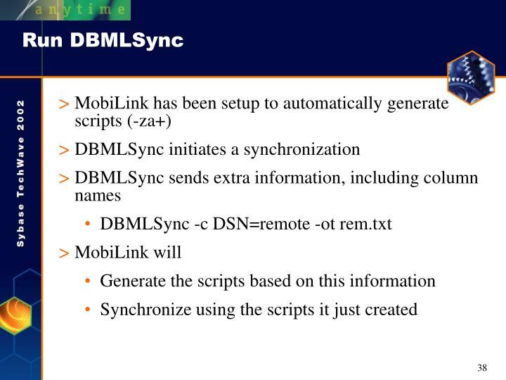 Run DBMLSync