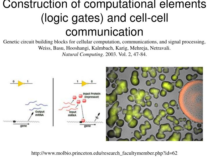 Construction of computational elements (logic gates) and cell-cell communication