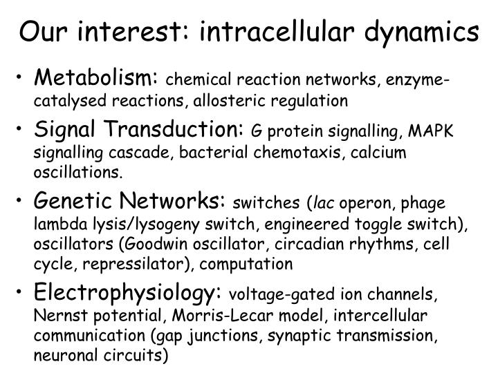 Our interest: intracellular dynamics