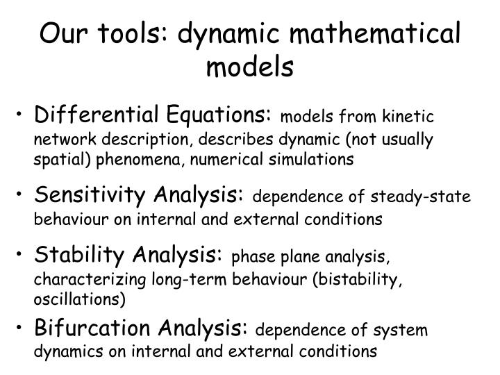 Our tools: dynamic mathematical models