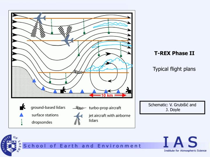 T-REX Phase II