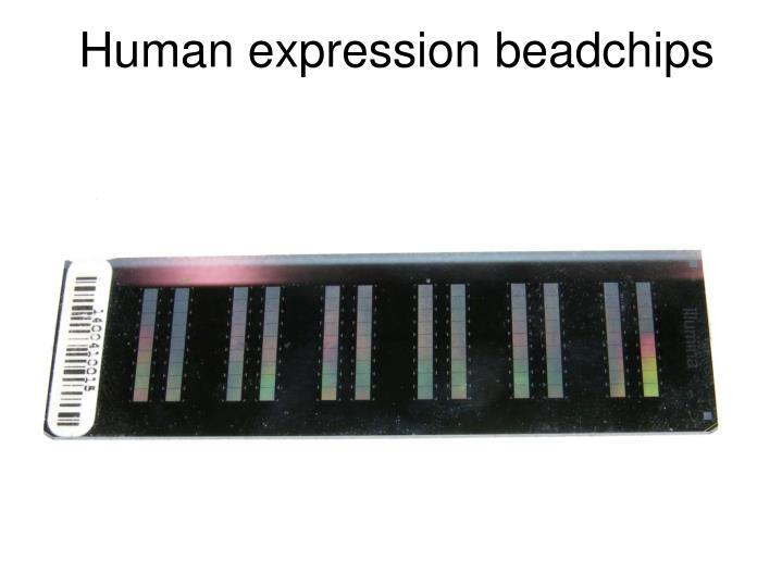 Human expression beadchips