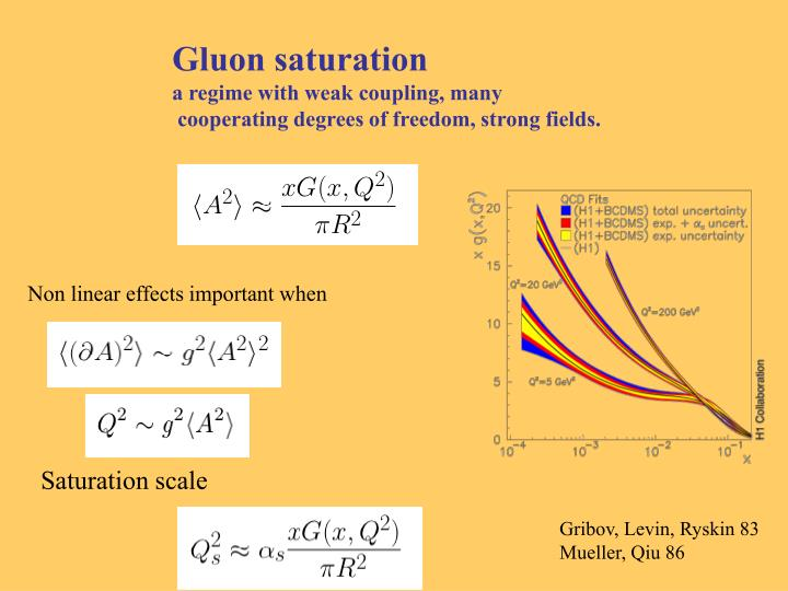 Gluon saturation