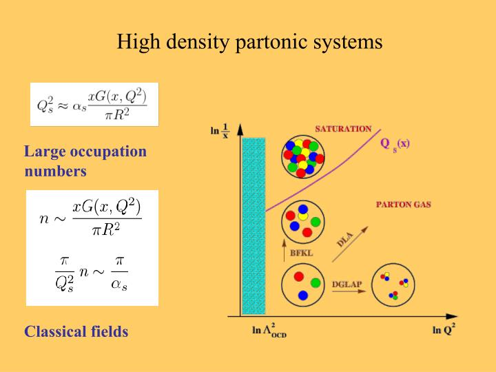 High density partonic systems