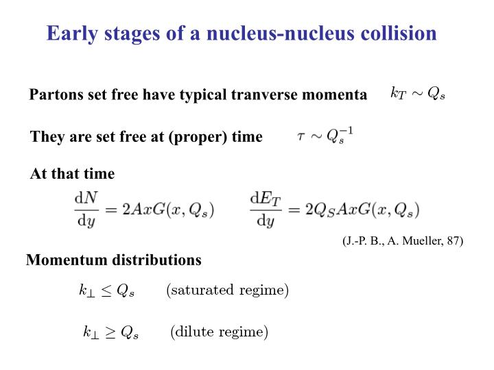 Early stages of a nucleus-nucleus collision