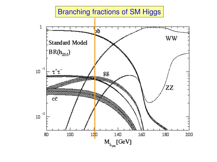 Branching fractions of SM Higgs