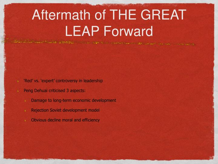Aftermath of THE GREAT LEAP Forward