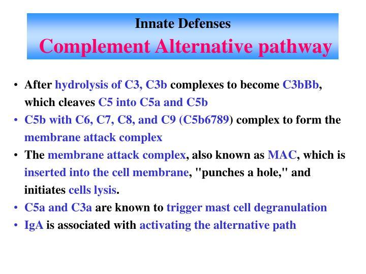 Innate Defenses