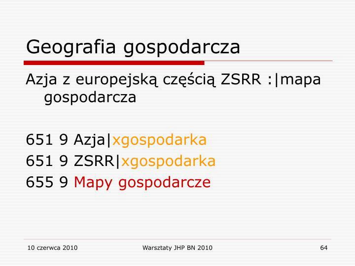 Geografia gospodarcza