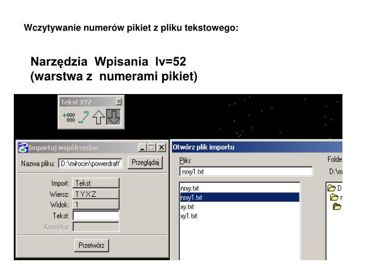 Wczytywanie numerów pikiet z pliku tekstowego: