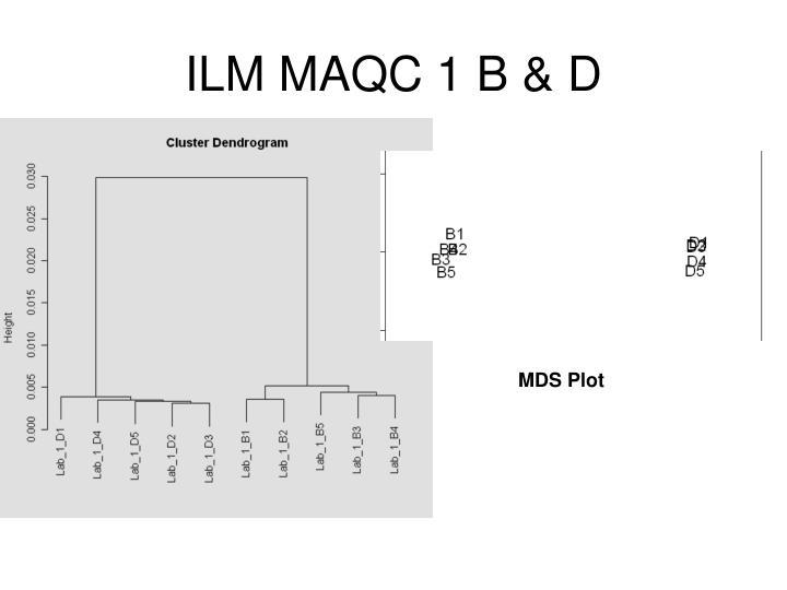 ILM MAQC 1 B & D