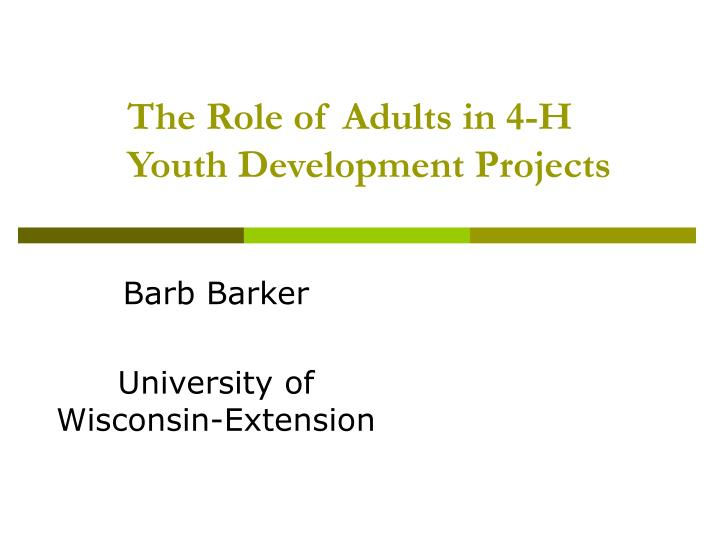 the role of adults in 4 h youth development projects