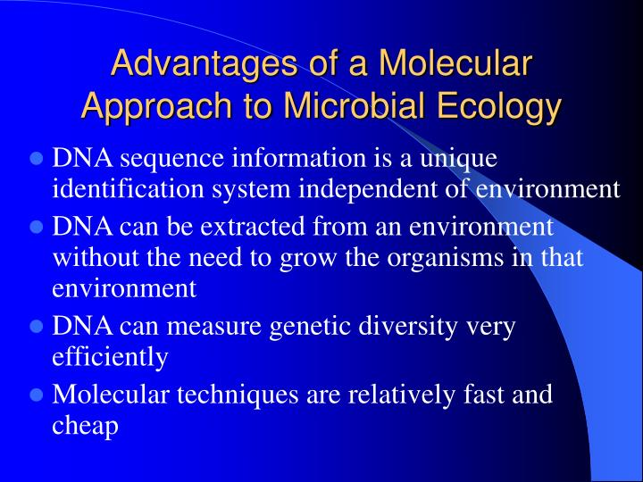 Advantages of a Molecular Approach to Microbial Ecology