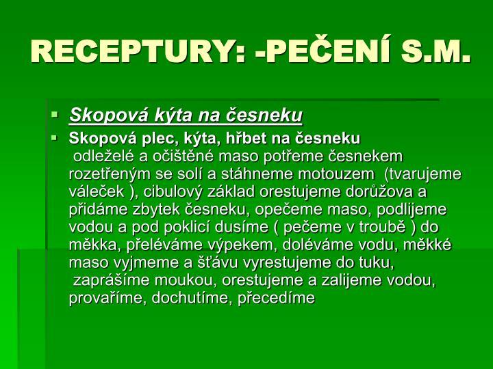 RECEPTURY: -PEČENÍ S.M.