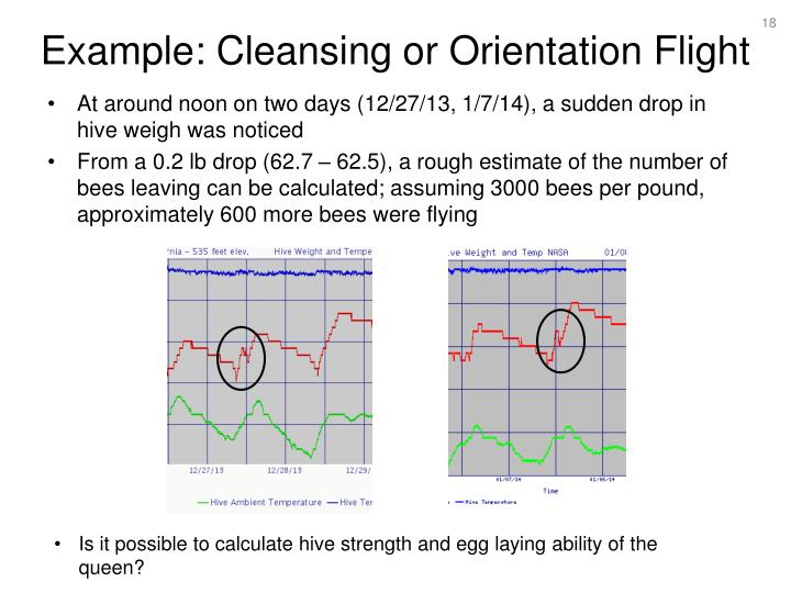 Example: Cleansing or Orientation Flight