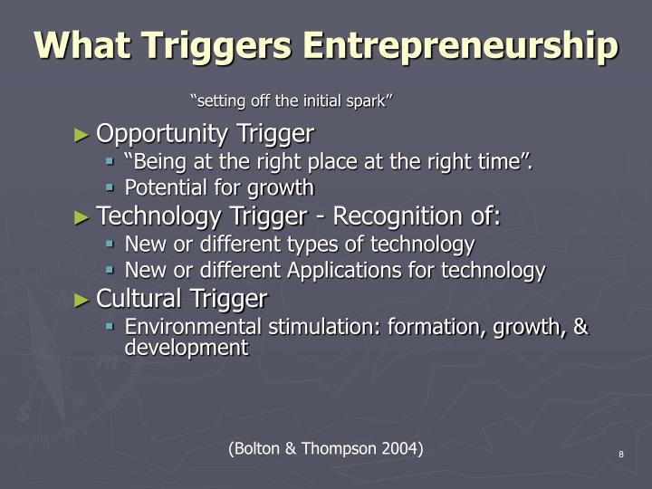 What Triggers Entrepreneurship