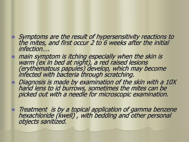 Symptoms are the result of hypersensitivity reactions to the mites, and first occur 2 to 6 weeks after the initial infection….