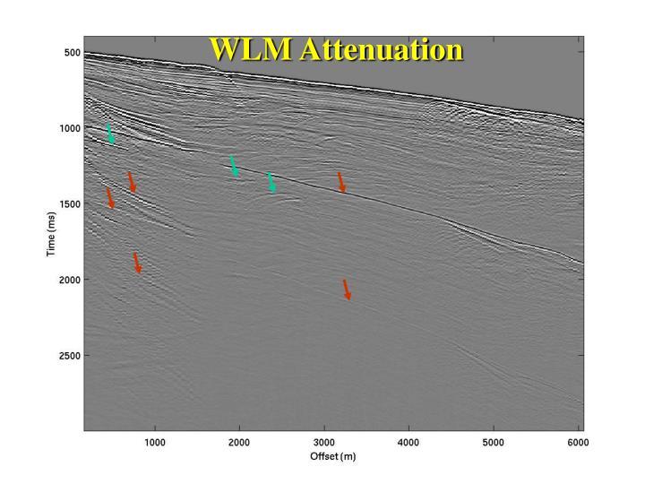 WLM Attenuation