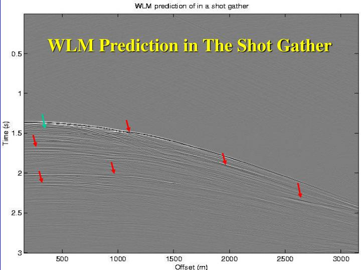 WLM Prediction in The Shot Gather