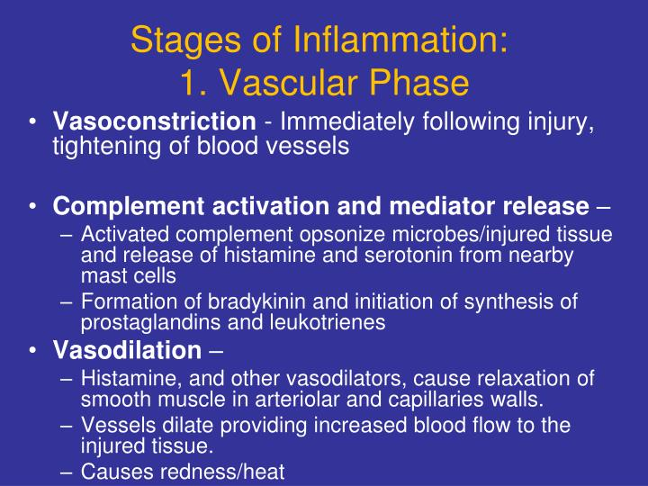 Stages of Inflammation: