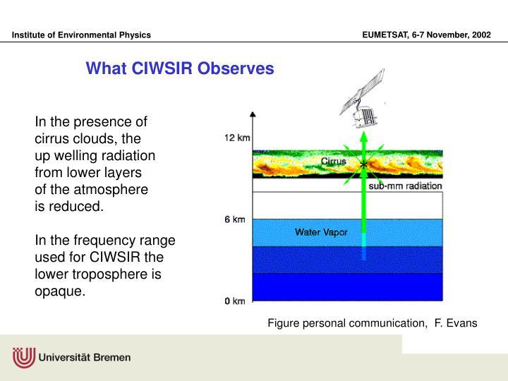 What CIWSIR Observes