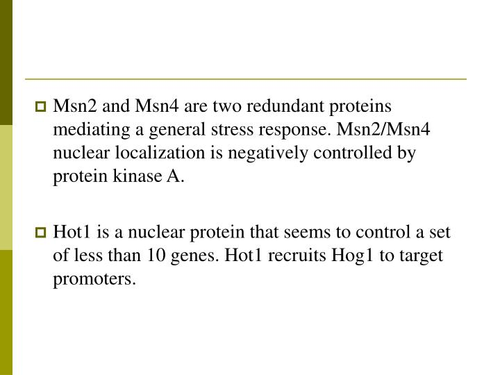 Msn2 and Msn4 are two redundant proteins mediating a general stress response. Msn2/Msn4 nuclear localization is negatively controlled by protein kinase A.