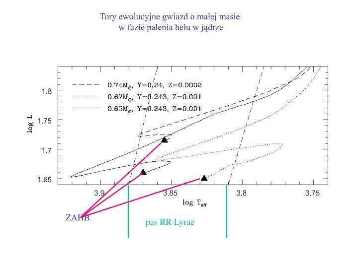 Tory ewolucyjne gwiazd o małej masie
