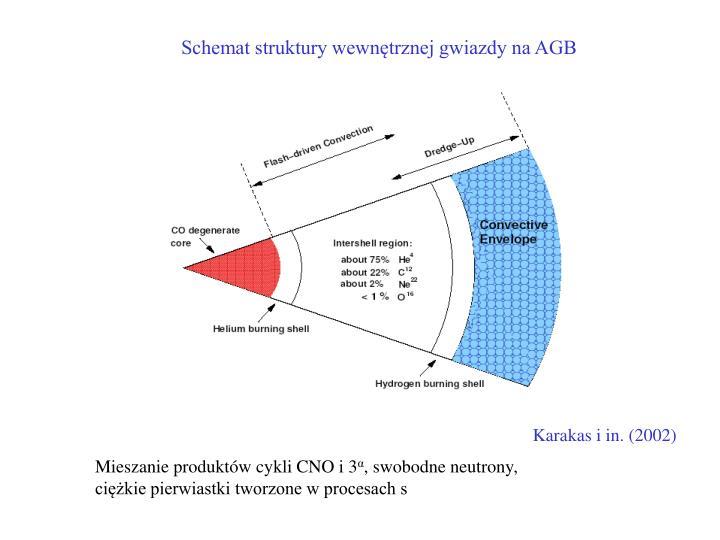 Schemat struktury wewnętrznej gwiazdy na AGB