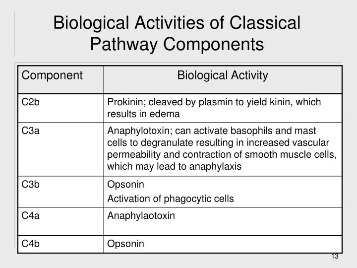 Biological Activities of Classical Pathway Components