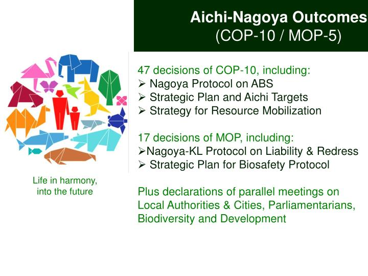 Aichi-Nagoya Outcomes
