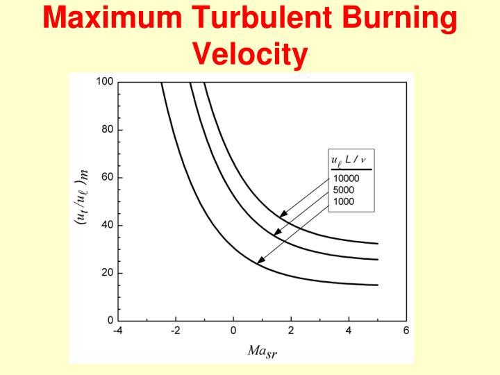 Maximum Turbulent Burning Velocity