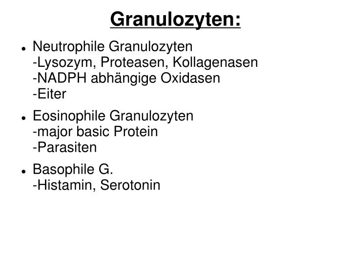 Granulozyten: