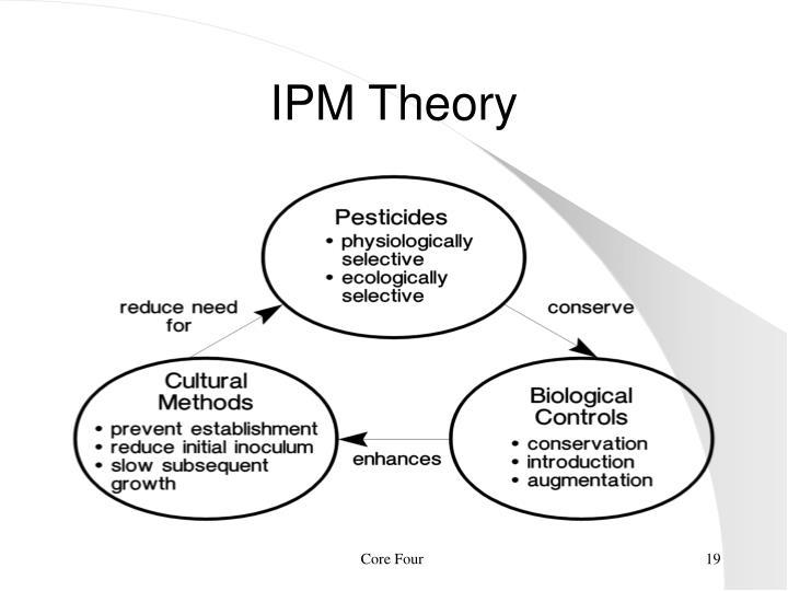 IPM Theory