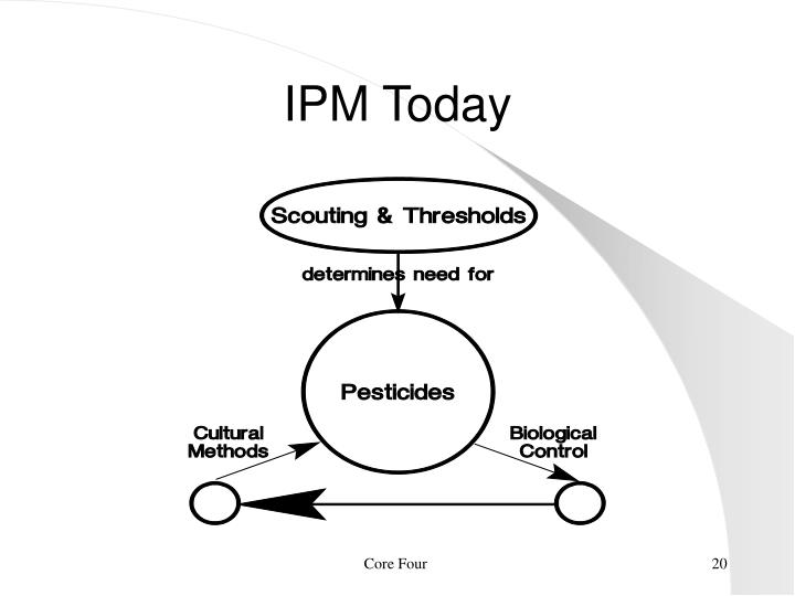 IPM Today