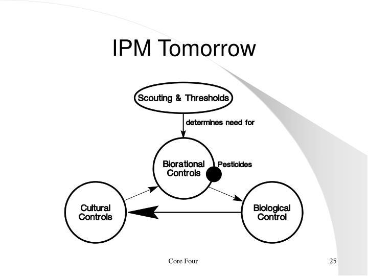 IPM Tomorrow