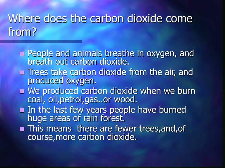 Where does the carbon dioxide come from?