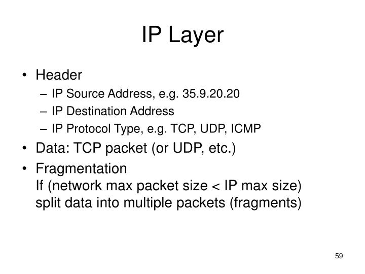 IP Layer