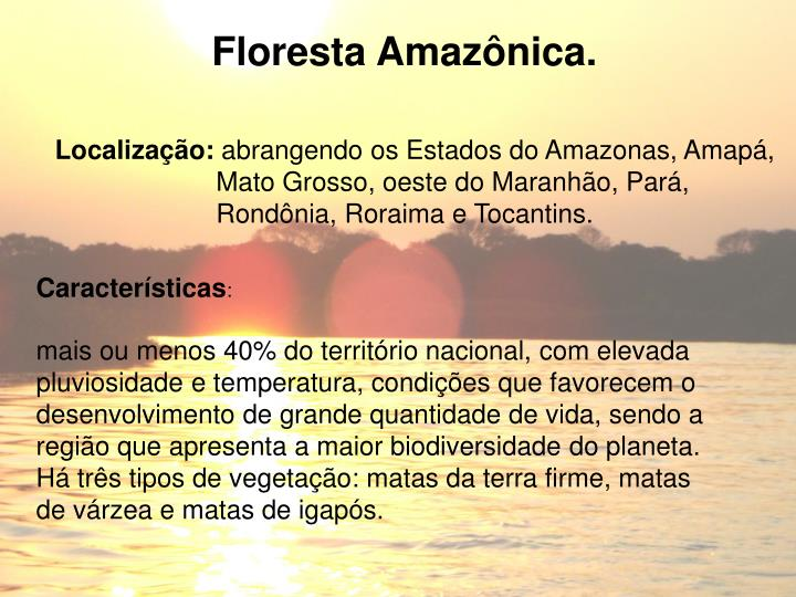 Floresta Amazônica.