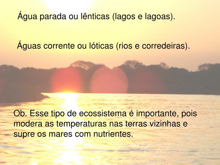 Água parada ou lênticas (lagos e lagoas).